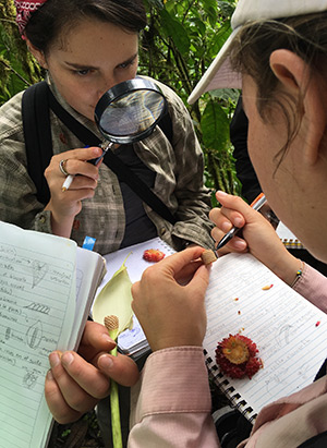 two students, one holding a magnifying glass and the other examining the anatomy of a flower