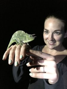 Woman looks at chameleon perched on her hand