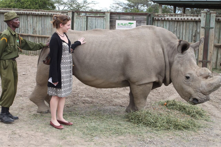 Man and woman touching a rhino in an enclosure