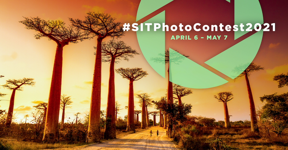 Baobab trees at sunset with a graphic over them of #SITPhotoContest2021 April 6-May 7 superimposed on it.